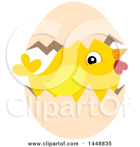 Clipart of a Hatching Yellow Chick - Royalty Free Vector Illustration by visekart