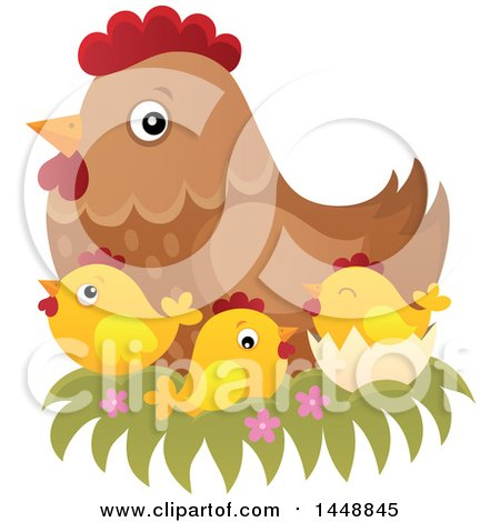 Clipart of a Brown Hen in a Nest with Chicks - Royalty Free Vector Illustration by visekart