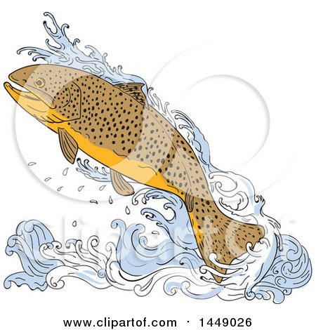 Clipart Graphic of a Drawing Sketch Styled Jumping Trout Fish and Water - Royalty Free Vector Illustration by patrimonio