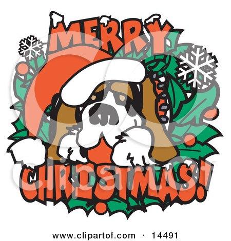 Christmas St Bernard Dog Wearing a Santa Hat  Posters, Art Prints
