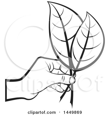 Clipart Graphic of a Black and White Hand Holding Leaves - Royalty Free Vector Illustration by Lal Perera