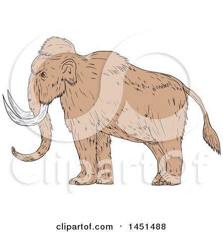 Clipart Graphic of a Drawing Sketch Styled Woolly Mammoth in Profile - Royalty Free Vector Illustration by patrimonio