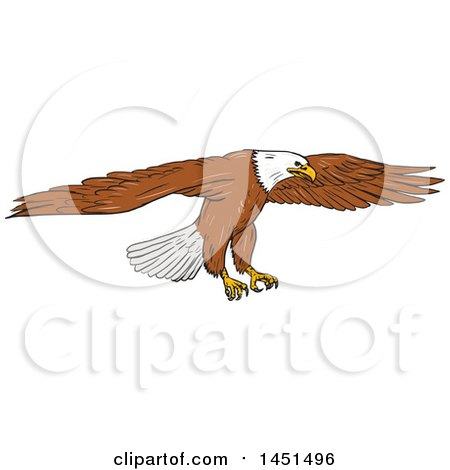 Clipart Graphic of a Sketched Bald Eagle Swooping - Royalty Free Vector Illustration by patrimonio