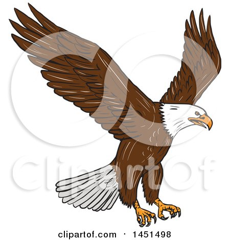 Clipart Graphic Of A Sketched Bald Eagle Flying Royalty Free Vector Illustration