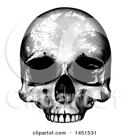 Clipart Graphic of a Black and White Engraved Human Skull - Royalty Free Vector Illustration by AtStockIllustration