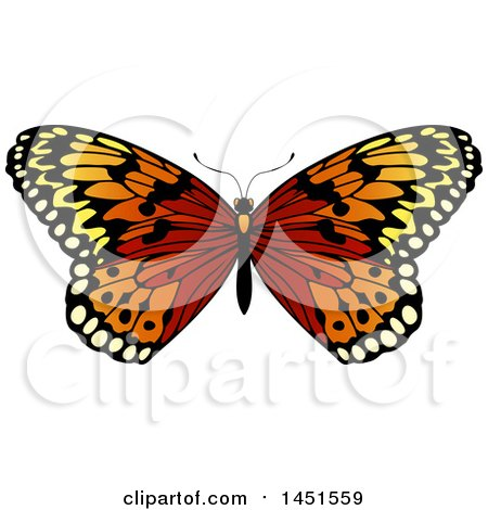 Clipart Graphic of a Beautiful Butterfly - Royalty Free Vector Illustration by AtStockIllustration