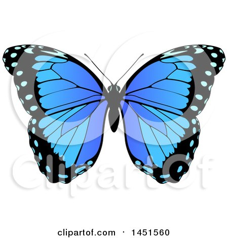 Clipart Graphic of a Beautiful Blue Butterfly - Royalty Free Vector Illustration by AtStockIllustration