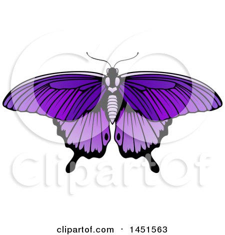 Clipart Graphic of a Beautiful Purple Butterfly or Moth - Royalty Free Vector Illustration by AtStockIllustration