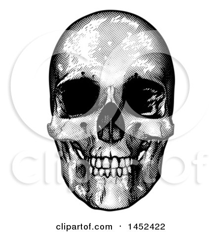 Clipart of a Black and White Engraved Human Skull - Royalty Free Vector Illustration by AtStockIllustration