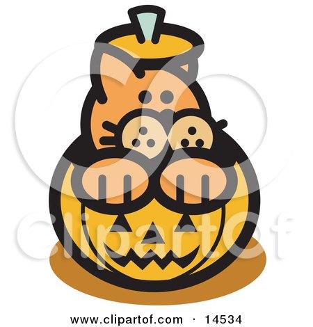 Orange Cat Inside A Halloween Pumpkin Clipart Illustration by Andy Nortnik