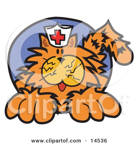 Orange Cat Wearing A White Nursing Hat With A Red Cross On It Clipart Illustration by Andy Nortnik