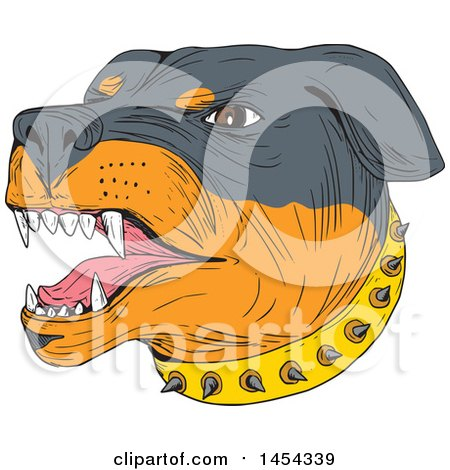 Clipart Graphic of a Sketched Drawing of an Aggressive Rottweiler Dog Wearing a Spiked Collar - Royalty Free Vector Illustration by patrimonio