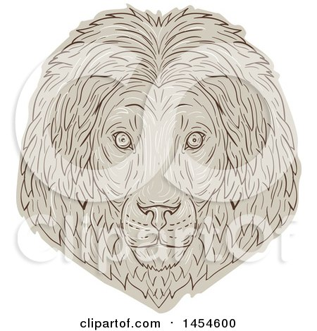 Clipart Graphic of a Sketched Male Lion Face - Royalty Free Vector Illustration by patrimonio