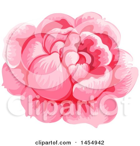 Clipart of a Pink Rose Flower Design Element - Royalty Free Vector Illustration by Vector Tradition SM