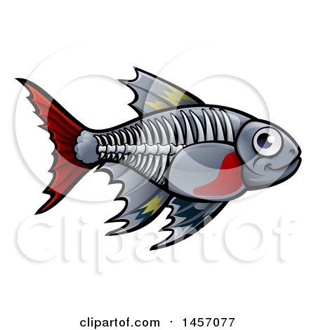 Clipart of a Cartoon X-ray Tetra Freshwater Fish - Royalty Free Vector Illustration by AtStockIllustration