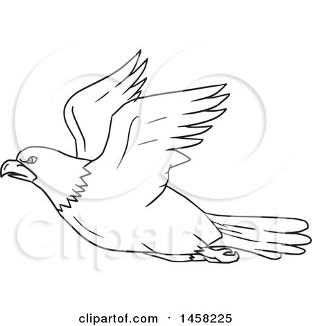 Clipart of a Black and White Flying Bald Eagle in Lineart Style - Royalty Free Vector Illustration by patrimonio