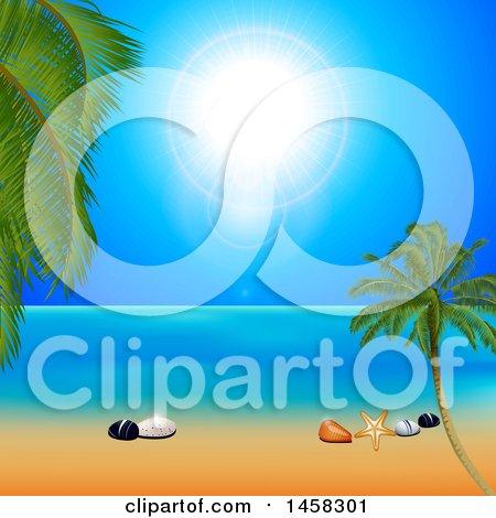 Clipart of a Sunny Tropical Beach with Shells on the Sand - Royalty Free Vector Illustration by elaineitalia