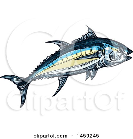 Clipart of a Sketched Tuna Fish - Royalty Free Vector Illustration by Vector Tradition SM