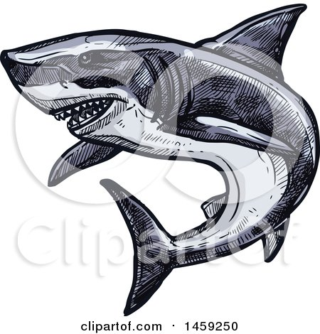 Clipart of a Sketched Shark - Royalty Free Vector Illustration by Vector Tradition SM