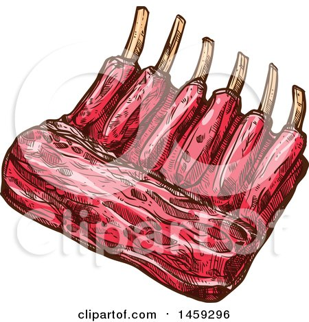 Clipart of a Sketched Rack of Ribs - Royalty Free Vector Illustration by Vector Tradition SM