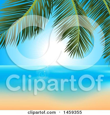Palm Branch Over A Sunny Ocean And Sandy Beach