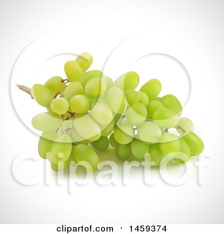 Clipart of a 3d Bunch of Green Grapes on a Shaded Background - Royalty Free Vector Illustration by cidepix