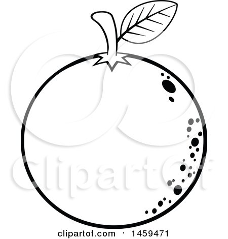 Clipart of a Black and White Navel Orange Fruit - Royalty Free Vector Illustration by Hit Toon