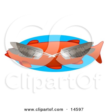 Four Feathers Over an Orange Fish Clipart Illustration by djart