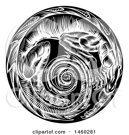 Clipart of a Vintage Black and White Woodcut Dragon Forming a Spiral in a Circle - Royalty Free Vector Illustration by AtStockIllustration