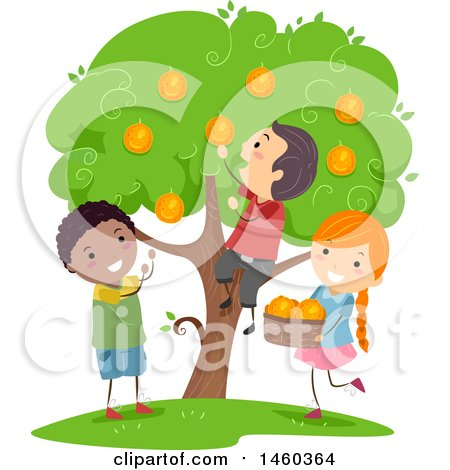 Clipart of a Group of Children Picking Oranges from a Tree - Royalty Free Vector Illustration by BNP Design Studio