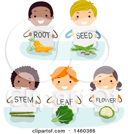 Clipart of a Group of Children Showing and Holding Signs on Root, Seed, Stem, Leaf, and Flower - Royalty Free Vector Illustration by BNP Design Studio