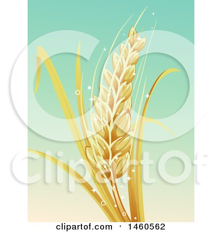 Clipart of a Barley Stalk over Gradient - Royalty Free Vector Illustration by BNP Design Studio