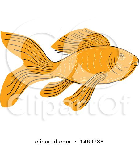 Clipart of a Gold Butterfly Koi Fish in Sketched Drawing Style - Royalty Free Vector Illustration by patrimonio