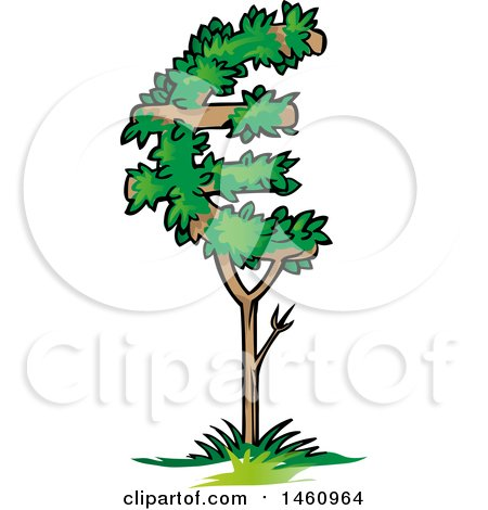 Clipart of a Euro Tree - Royalty Free Vector Illustration by Domenico Condello