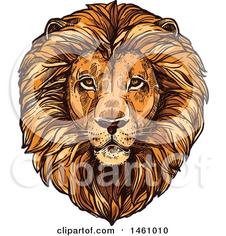 Clipart of a Sketched Majestic Male Lion Head - Royalty Free Vector Illustration by Vector Tradition SM