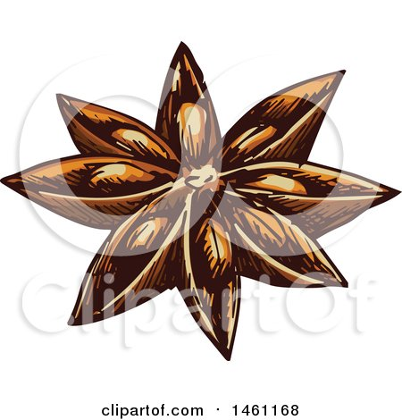 Clipart of a Sketched Star Anise - Royalty Free Vector Illustration by Vector Tradition SM