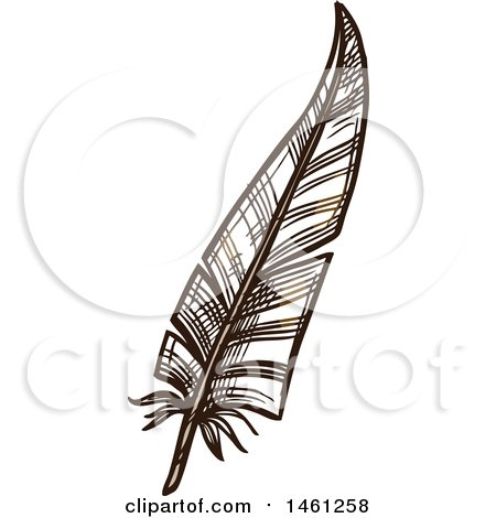 Clipart of a Sketched Feather - Royalty Free Vector Illustration by Vector Tradition SM