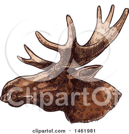 Clipart of a Sketched Moose Head in Profile - Royalty Free Vector Illustration by Vector Tradition SM