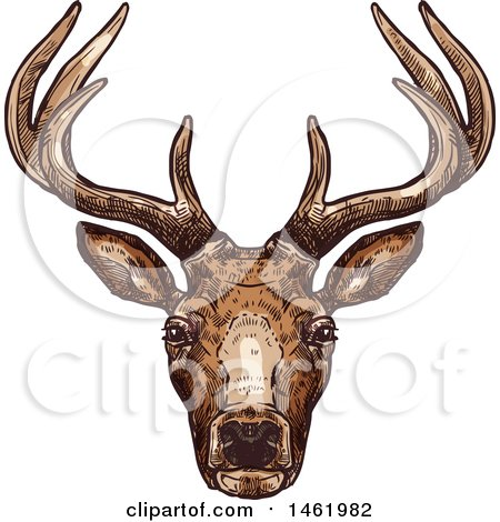 Clipart of a Sketched Reindeer Head - Royalty Free Vector Illustration by Vector Tradition SM