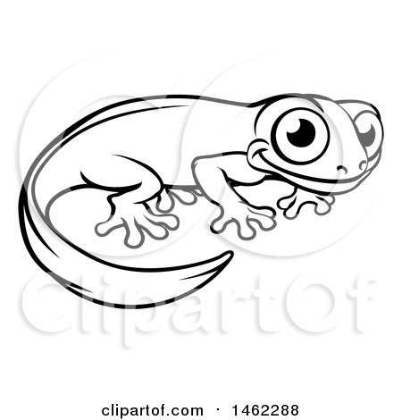 Cartoon Clipart Of A Black And White Happy Newt Leaning on ...
