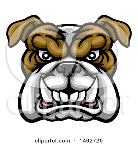 Clipart of a Growling Aggressive Bulldog Mascot Face - Royalty Free Vector Illustration by AtStockIllustration