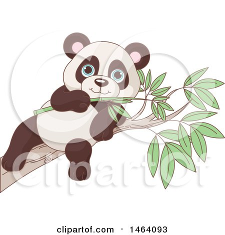 Clipart of a Cute Baby Panda Eating on a Eucalyptus Branch - Royalty Free Vector Illustration by Pushkin