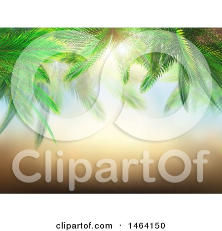 Clipart of a 3d Border of Palm Branches Against a Sunny Sky - Royalty Free Illustration by KJ Pargeter