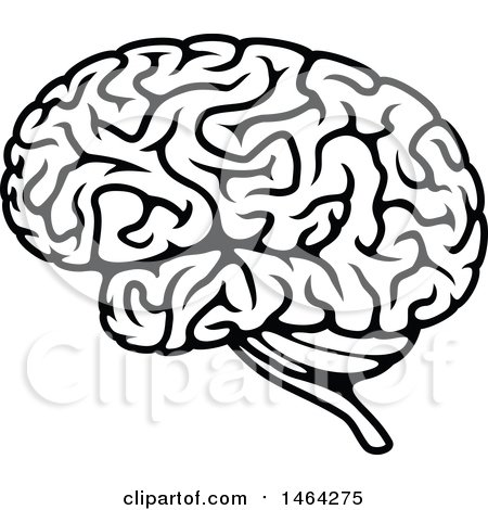 Clipart of a Black and White Human Brain - Royalty Free Vector Illustration by Vector Tradition SM