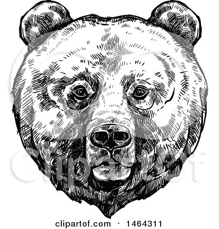 Clipart of a Sketched Black and White Bear - Royalty Free Vector Illustration by Vector Tradition SM
