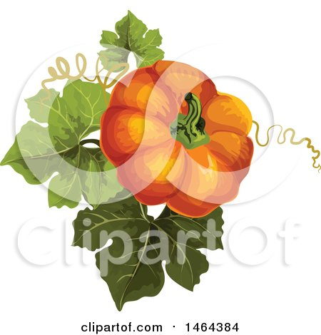 Clipart of a Pumpkin and Leaves - Royalty Free Vector Illustration by Vector Tradition SM