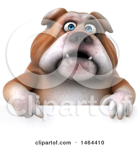Clipart of a 3d Bill Bulldog Mascot over a Sign, on a White Background - Royalty Free Illustration by Julos