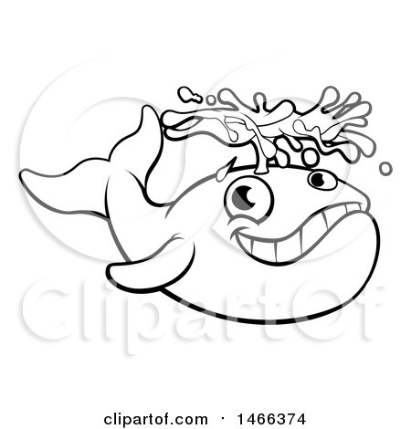 Clipart of a Black and White Whale Spouting Water - Royalty Free Vector Illustration by AtStockIllustration