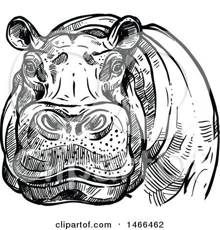 clipart of a big game hippopotamus safari hunting design