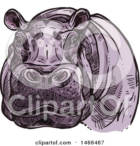 Clipart of a Sketched Hippo - Royalty Free Vector Illustration by Vector Tradition SM